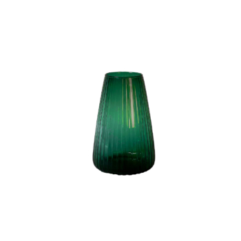 Dim stripe large green